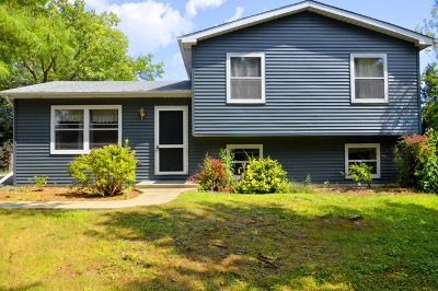 Lake Villa Single Family Home For Sale: 27 Sheehan Drive