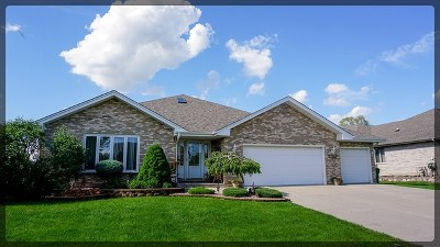 Lockport Single Family Home For Sale: 1316 Tralee Lane