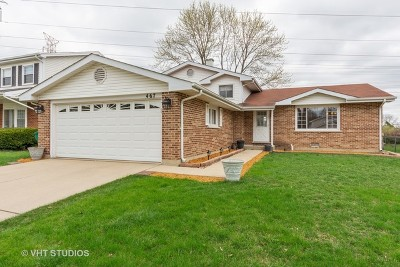 Buffalo Grove Single Family Home For Sale: 467 Carman Avenue
