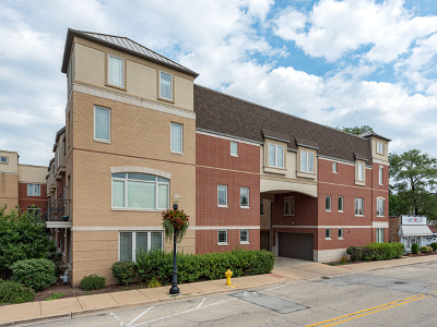 Downers Grove Condo/Townhouse New: 922 Warren Avenue #103