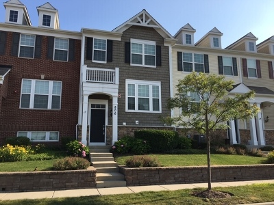 Arlington Heights Condo/Townhouse New: 806 East Wing Street