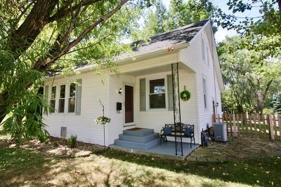 New Lenox Single Family Home For Sale: 325 South Cedar Road