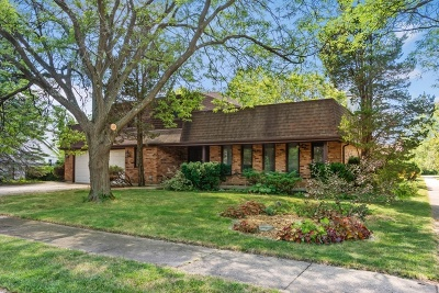 Glenview Single Family Home For Sale: 3843 Lizette Lane