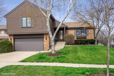 Vernon Hills Single Family Home For Sale: 302 Apollo Court