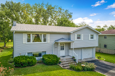 New Lenox Single Family Home For Sale: 1020 North Cooper Road