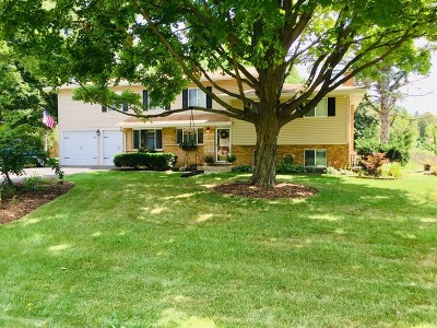Lisle Single Family Home For Sale: 6045 Lenox Court