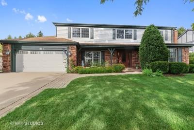Libertyville Single Family Home For Sale: 1205 Virginia Avenue