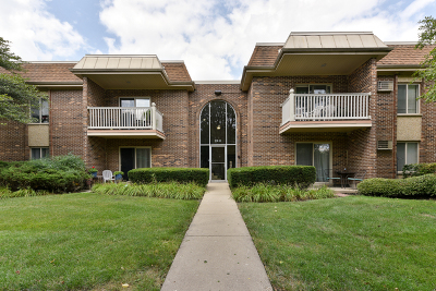 Arlington Heights Condo/Townhouse New: 2418 North Kennicott Drive #1B