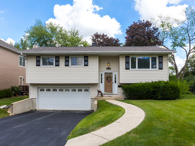 Downers Grove Single Family Home For Sale: 6033 Blodgett Avenue