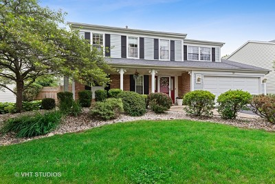 Mundelein Single Family Home For Sale: 31 South Parliament Way