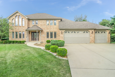 Kane County Single Family Home New: 2201 Big Woods Drive