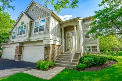 Schaumburg Condo/Townhouse For Sale: 10 Meadow Court