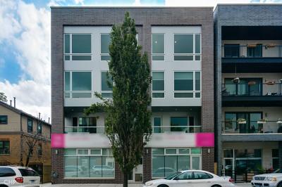 Condo/Townhouse New: 3051 West Armitage Avenue #1