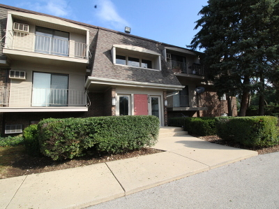 Condo/Townhouse New: 254 East Bailey Road #F