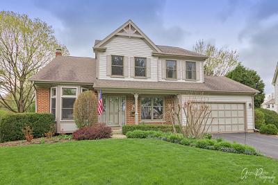 Buffalo Grove Single Family Home For Sale: 45 Thompson Court