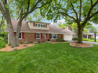 Wheaton Single Family Home For Sale: 1119 Delles Road