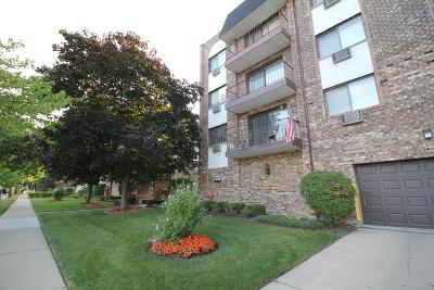Des Plaines Condo/Townhouse New: 722 Graceland Avenue #304