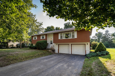 Oswego Single Family Home Contingent: 61 West Rickard Drive