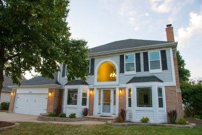 Carol Stream Single Family Home For Sale: 1141 Winding Glen Drive