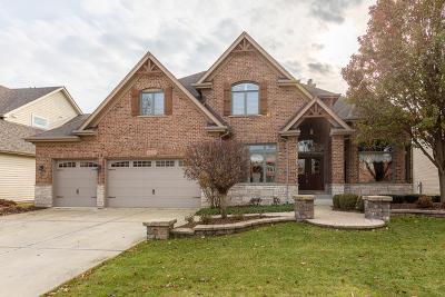 Naperville Single Family Home New: 3832 Junebreeze Lane