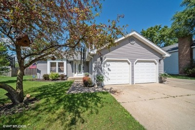 McHenry Single Family Home For Sale: 3804 West Prestwick Street