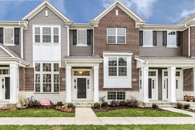 Naperville Rental New: 2923 Madison Drive