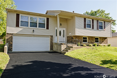 Lake Zurich Single Family Home For Sale: 990 Brush Hill Lane