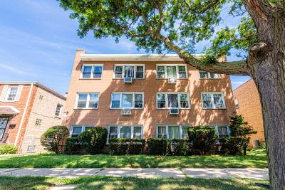 Condo/Townhouse New: 2724 West Berwyn Avenue #2A