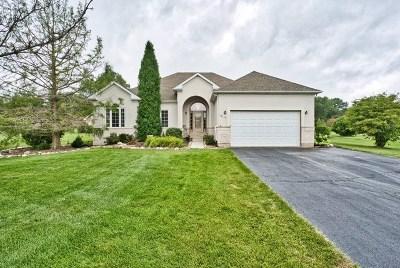Marengo Single Family Home For Sale: 17115 Fieldstone Drive