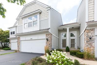 Elgin Condo/Townhouse New: 1116 Delta Drive