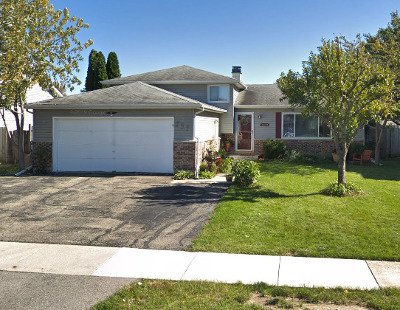 Bolingbrook Single Family Home New: 252 Butte View Drive