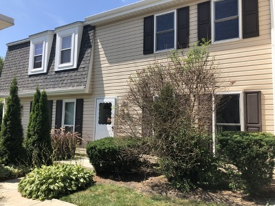 Roselle Condo/Townhouse For Sale: 204 Rodenburg Road