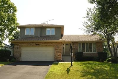 Romeoville Single Family Home For Sale: 625 Michigan Drive