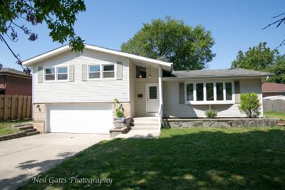 Lansing Single Family Home New: 17020 Bernadine Street