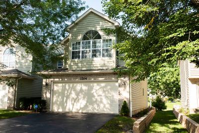 Naperville Condo/Townhouse New: 1704 Tamahawk Lane