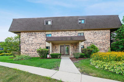 Palos Heights, Palos Hills Condo/Townhouse New: 9180 South Road #A