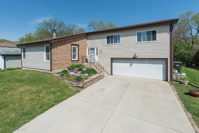 Glendale Heights Single Family Home For Sale: 290 Loveland Drive