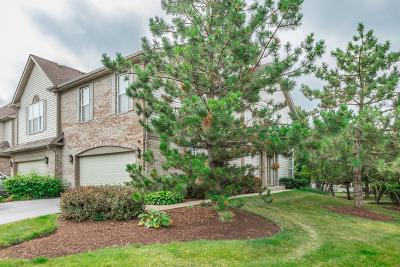 Hoffman Estates Condo/Townhouse New: 5533 McDonough Road #5533