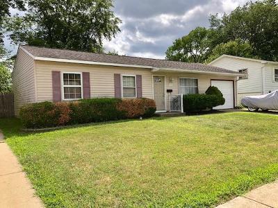 Romeoville Single Family Home New: 217 Healy Avenue