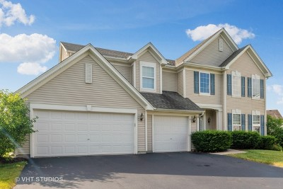 Bolingbrook Single Family Home New: 4 Kite Court