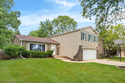 Naperville Single Family Home New: 6s130 Country Drive