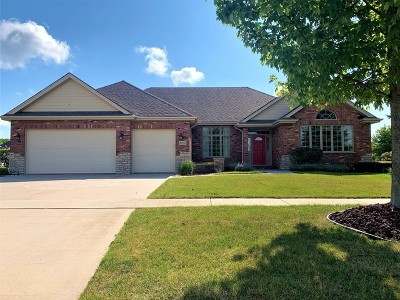 Frankfort Single Family Home For Sale: 21915 Parkway Lane