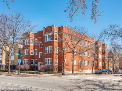 Evanston Condo/Townhouse New: 203 Ridge Avenue #101