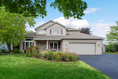 Carol Stream Single Family Home New: 625 Chestnut Drive