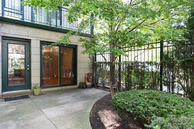 Condo/Townhouse New: 1812 South State Street #19