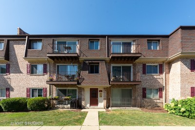 Palatine Condo/Townhouse For Sale: 876 South Plum Grove Road #307
