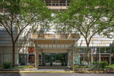 Condo/Townhouse New: 110 East Delaware Place #1804