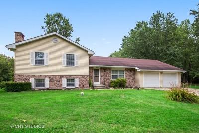 Custer Park Single Family Home For Sale: 36203 Irish Lane
