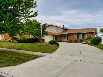 Orland Park Single Family Home New: 13634 Natchez Trail
