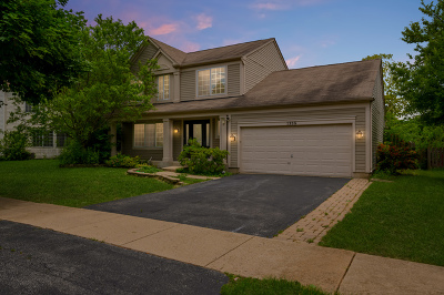Naperville Single Family Home New: 1338 Tara Belle Parkway